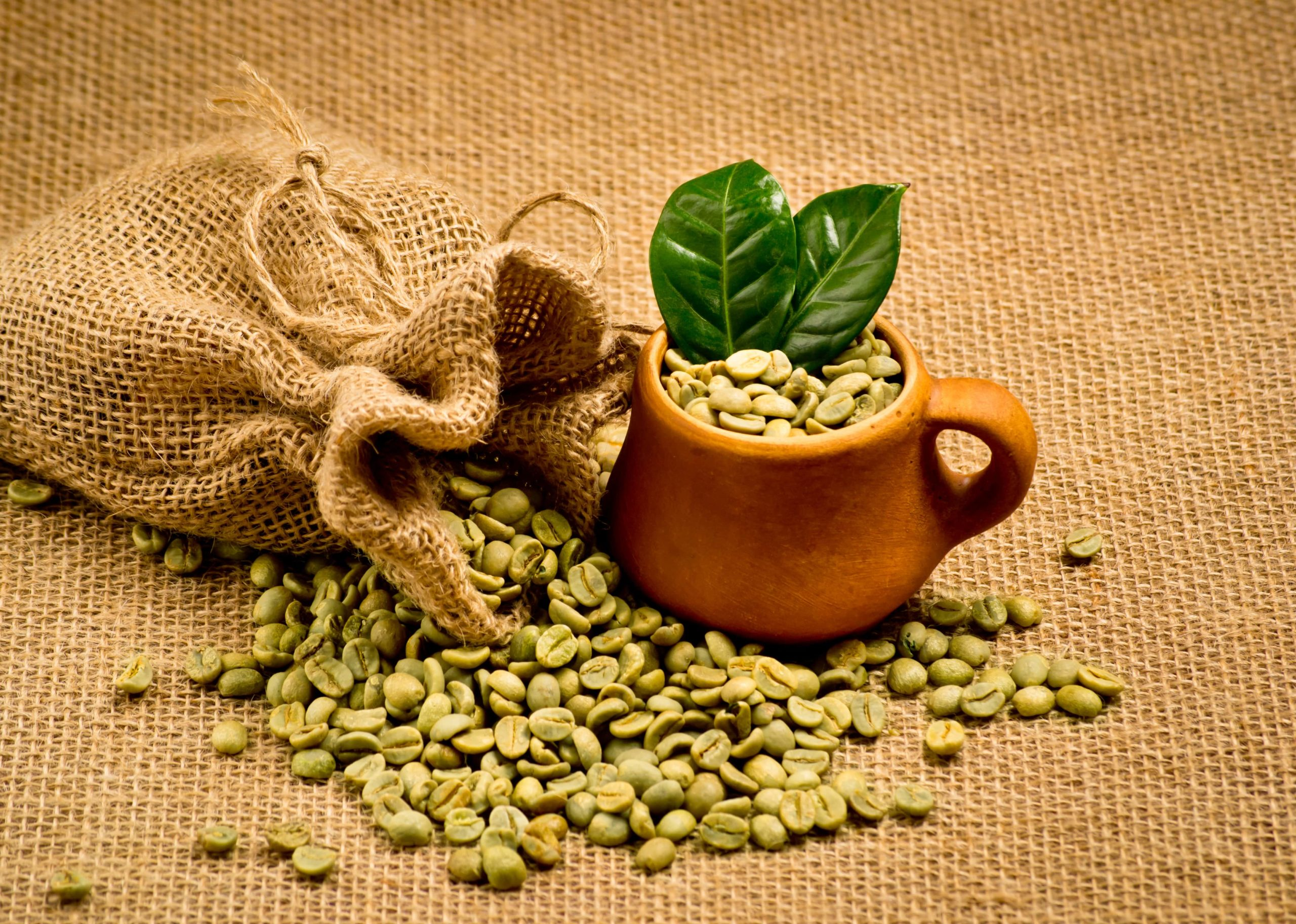 You are currently viewing Green coffee beans extract for weight loss review