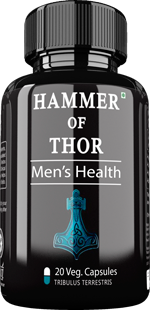 Hammer of thor singapore