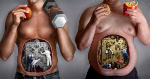 What is efficient metabolic diet, Review, and recipes